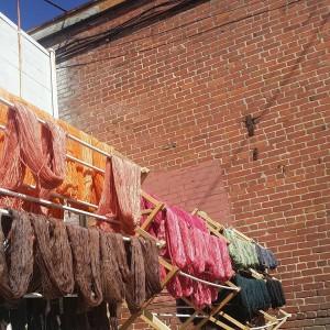 Anzula yarn on drying racks